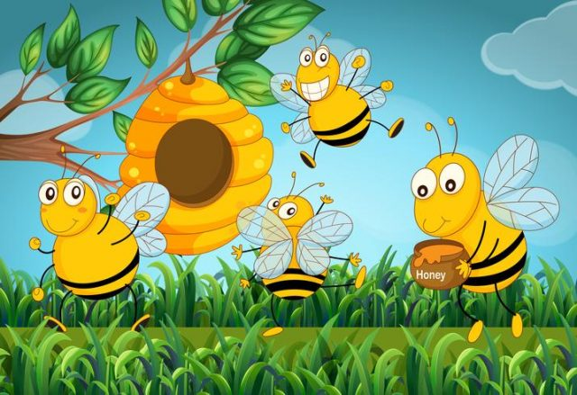 La vie de la ruche